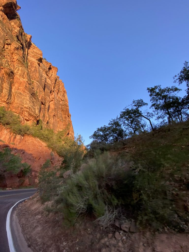 driving through Zion National Park at sunset